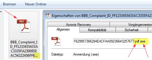 Links wie sich das angebliche PDF zeigt, rechts die wahre Dateiendung